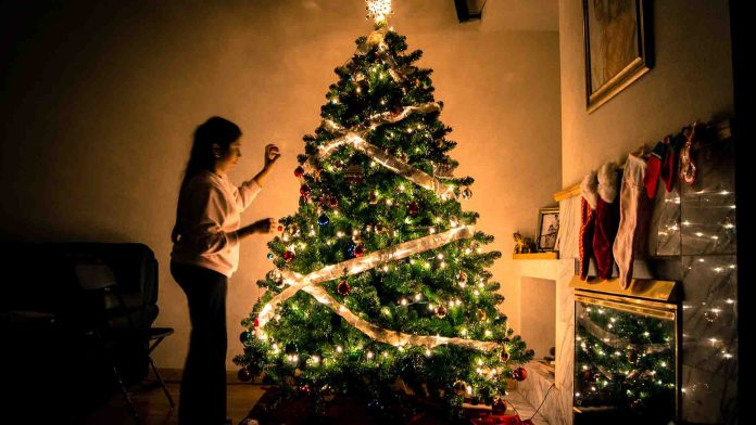 Easy Tips to Recycle Your Christmas Tree