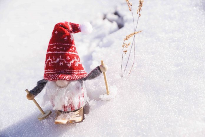 6 Tips On How to Care for Your Lawn in Winter